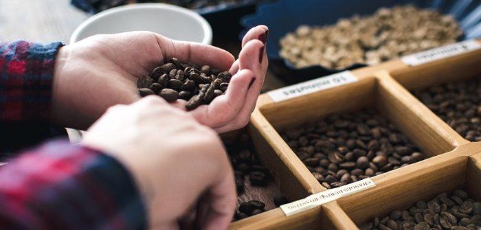 Tecnologia em Cafeicultura